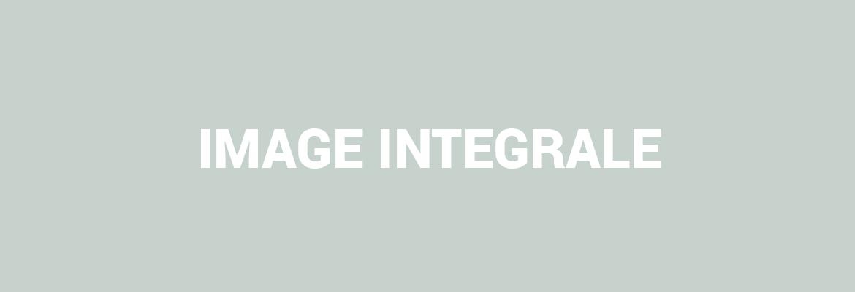 heading-integrale